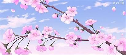 Sakura Trick Ago Data Heart