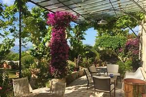 Mediterrane Bäume Winterhart : mediterrane pflanzen die 10 wichtigsten mediterranen pflanzen tipps ~ Frokenaadalensverden.com Haus und Dekorationen