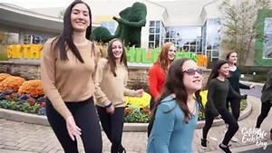 Artistry Dance Project - Blythedale Children's Hospital ...