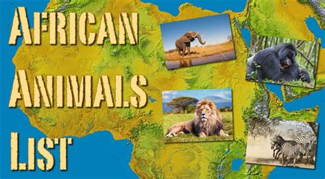 List African Animals Facts