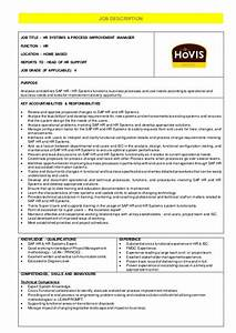 Hr Systems  U0026 Process Improvement Manager - Job Description