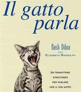 Il gatto parla Capire il linguaggio segreto del gatto
