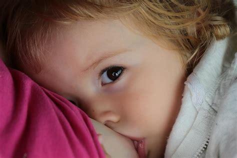 breastfeeding  toddler stay