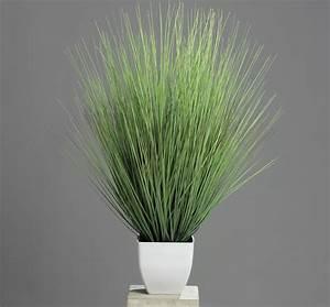 Kunstgras Im Topf : dekopflanze kunstgras 80cm isolepsis im topf gr serb schel kaufen ~ Eleganceandgraceweddings.com Haus und Dekorationen