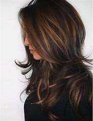 Highlights with Brunette Hair Color Ideas