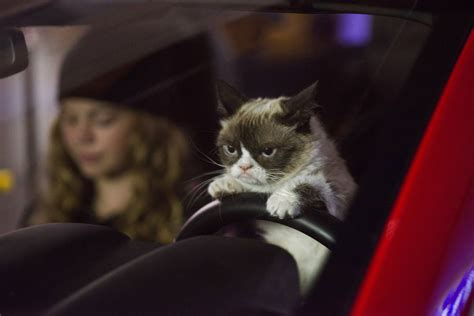 Grumpy Cat's Worst Christmas Ever Trailer Featuring The