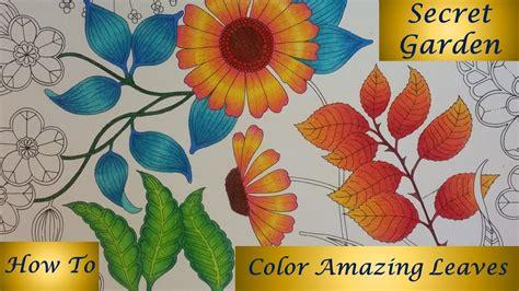 color amazing leaves secret garden coloring