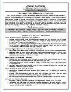 Software sales executive resume example for Software executive resume