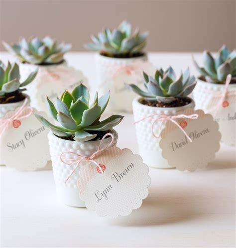 25+ Best Ideas About Succulent Wedding Favors On Pinterest. Wedding Dress Vietnam. Wedding Consultant Assistant Jobs. 50th Wedding Anniversary Vows. Wedding Shower Favors Ideas To Make. Wedding Response Cards International Postage. Wedding Invitation Wording Ideas Casual. Wedding Table Decorations In Black And White. Wedding Photos Turned Out Bad