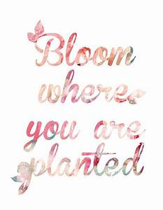 Best 25+ Spring quotes ideas on Pinterest Spring, Quotes