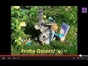 Ostergrüße Video Kostenlos : fg41 frohe ostern osterhasen video osterw nsche vom sprechenden osterhasen gedicht youtube ~ Watch28wear.com Haus und Dekorationen