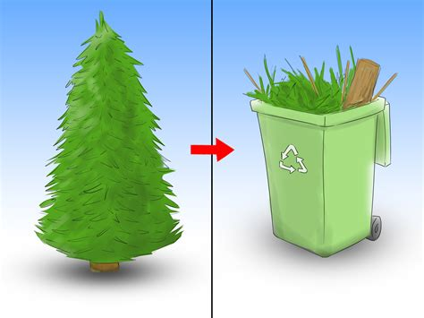taking care of christmas trees how to care for a tree 12 steps with pictures