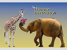 Geburtstagskarte Geburtstag · Kostenloses Bild auf Pixabay