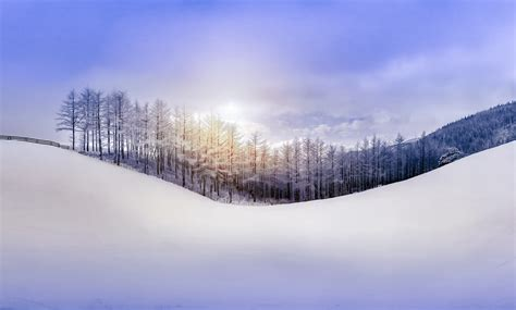 Frozen Wallpapers Free Download Nature Sky Forest Snow Hill Winter Wallpaper 2500x1508 210466 Wallpaperup