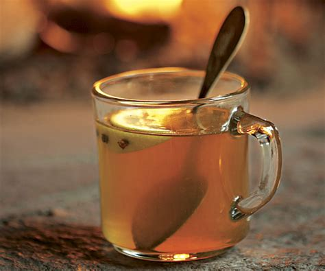 bourbon hot toddy recipe finecooking