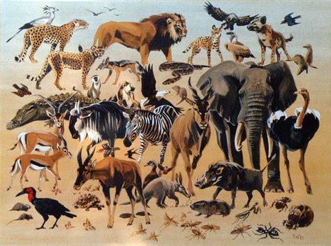 serengetis animal diversity serengetis animal