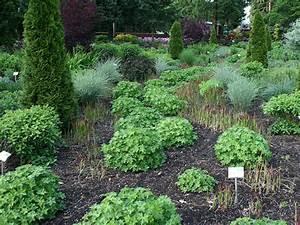Pflanzen Sonniger Standort : pflanzen sonniger standort gladiolen pflanzen in allen ~ Michelbontemps.com Haus und Dekorationen