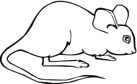 printable mouse coloring pages  kids