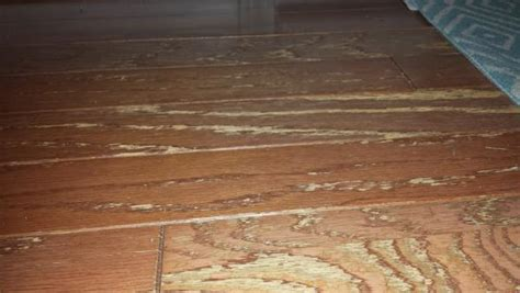 restoring worn engineered flooring doityourselfcom