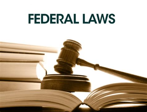 laws federal state  local legal  lawyers