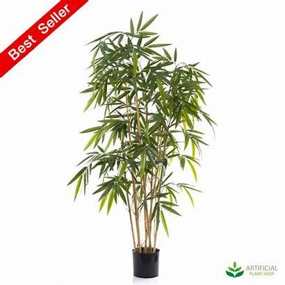 Bamboo Plant Tree Zen Artificial Plants 6m