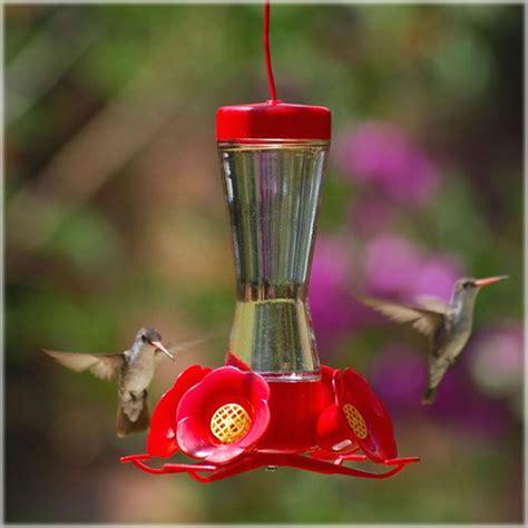 pet hummingbird for pet hummingbird pinch waist glass bird feeder at 4587