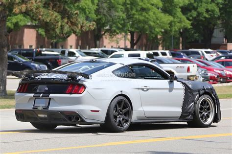 2018 Shelby Gt350 Confirmed, 2019 Shelby Gt500 Incoming