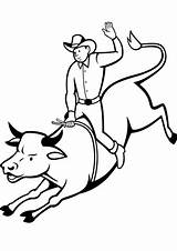 Bull Coloring Rodeo Rider Riding Pages Drawing Printable Cowboy Graphics Categories Getdrawings sketch template