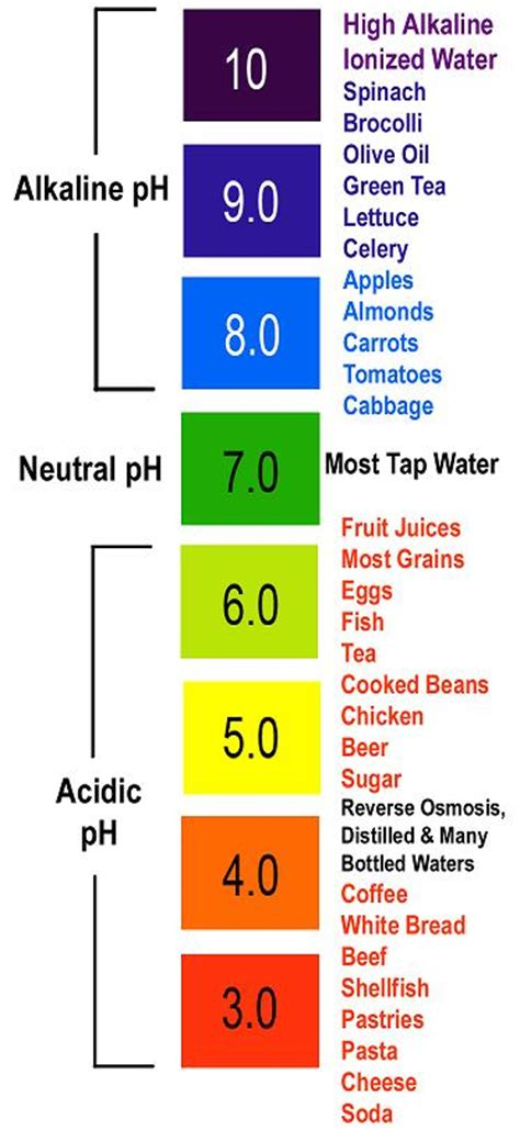 ph levels  cancer alkaline  acidic foods benzinga