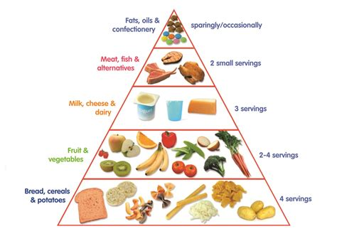 Toddler Food Pyramid First 1000 Days