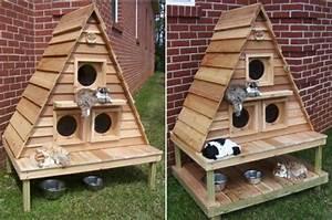 Arbre A Chat En Palette : choisir une maisonnette pour chat ~ Melissatoandfro.com Idées de Décoration