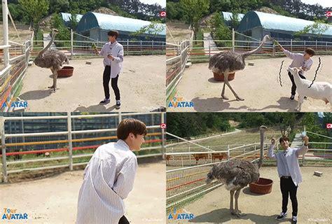 6 Interaksi Lucu Antara Kpop Idol Dan Binatang