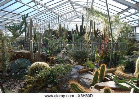 Botanischer Garten München Kakteen by Kaktus Haus Botanischer Garten M 252 Nchen Bayern
