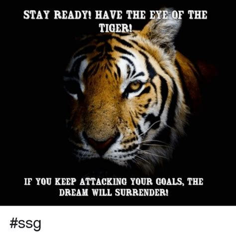 Eye Of The Tiger Meme - eye of the tiger meme 100 images 25 best memes about eye of the tiger eye of the tiger memes