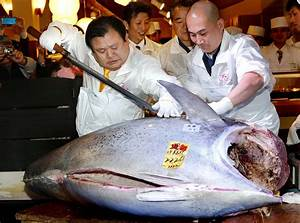 Record Price for Bluefin Tuna at Japan Annual Auction ...