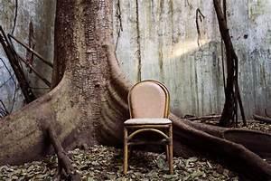 Möbel Aus Baumstämmen : nat rlichkeit und individualit t m bel aus baumst mmen ~ Frokenaadalensverden.com Haus und Dekorationen