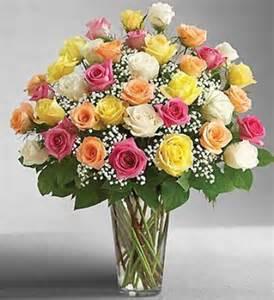 Three Dozen Roses in a Vase
