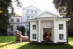 Hund Im Haus : hunde haus ~ Lizthompson.info Haus und Dekorationen