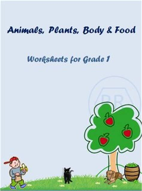 animals plants and food worksheets for grade 1 by