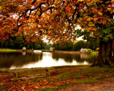 Autumn Wallpapers by Daily Cool Pictures Gallery 45 Wonderful Autumn