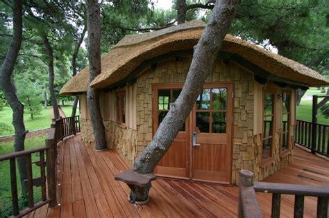 amazing cool tree house ideas home design