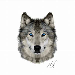 Wolf Face by Mikstyx on DeviantArt