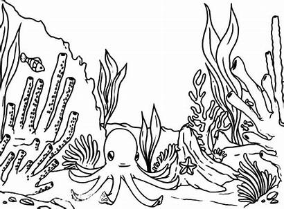 Reef Coral Coloring Pages Barrier Fish Octopus