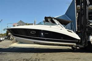 2010 Sea Ray 280 Sundancer 37 Hours On 350mag With Seacore
