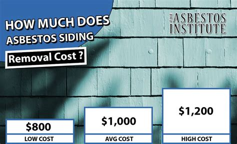 asbestos removal cost options asbestos meaning