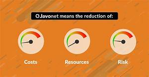 Reduce The Cost  Resources And Risk In Your Java And  Net