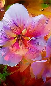 Abstract Flower Painting HD Wallpaper   Background Image ...