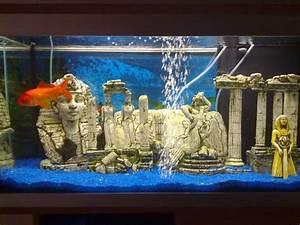Idee Decoration Aquarium : id e d co aquarium poisson rouge ~ Melissatoandfro.com Idées de Décoration