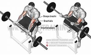 Barbell Preacher Curl Exericse Instructions And Video