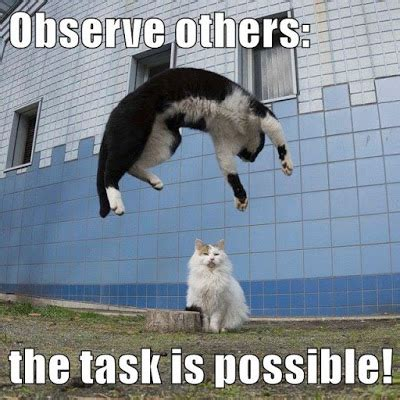 Growth Mindset Resources Observe Others The Task Is Possible